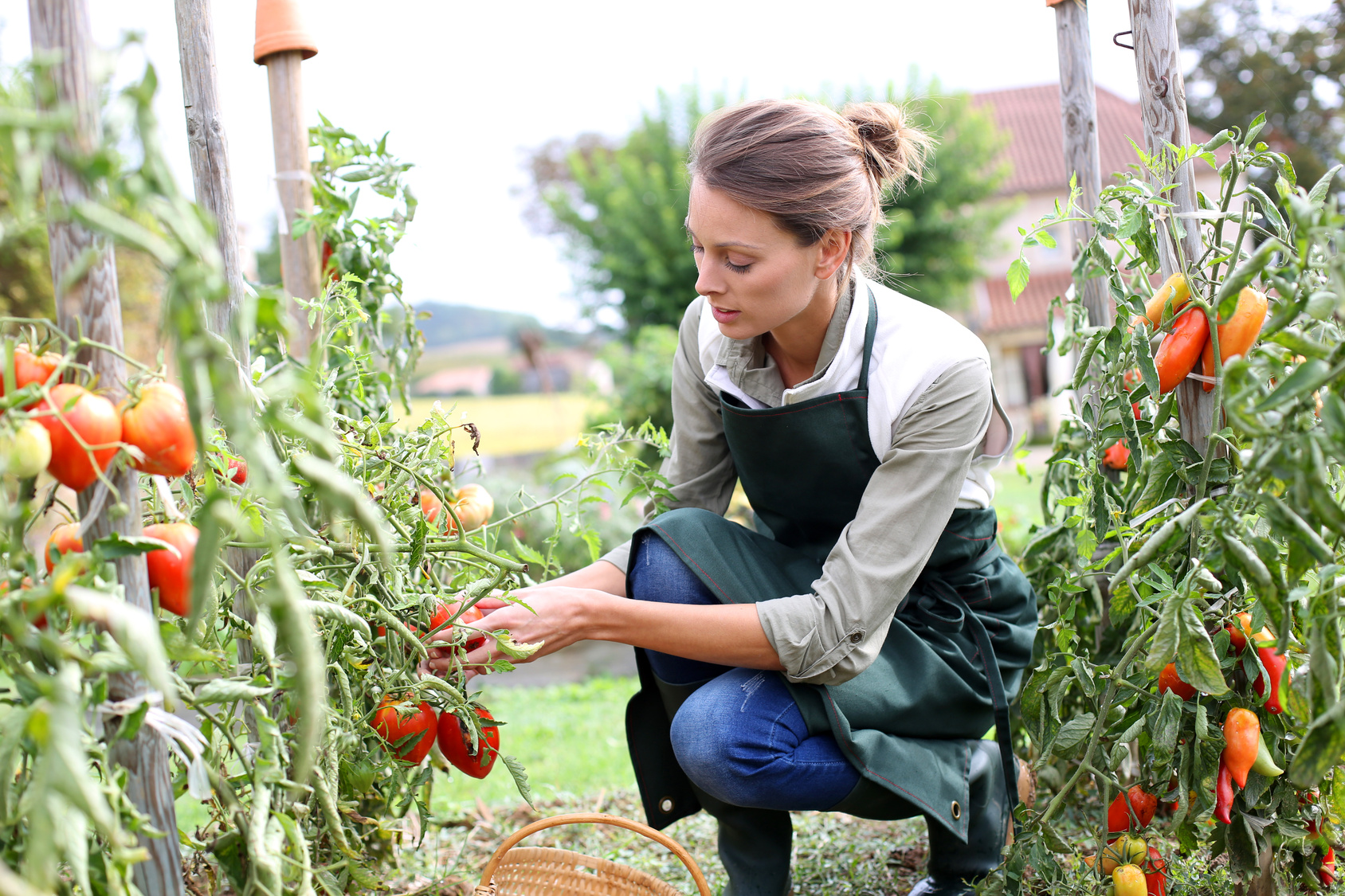 Agricatering_Donne in campo